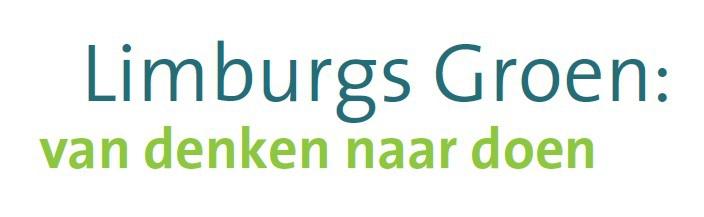 Succesvol Limburgs Verkiezingsdebat